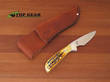 Bear and Son Invincible Skinner Knife - Stag Handle 582